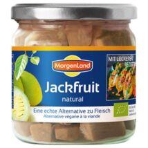 Jackfruit BIO 180g Morgenland
