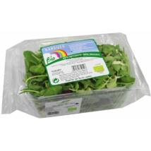Saláta mix dobozban BIO