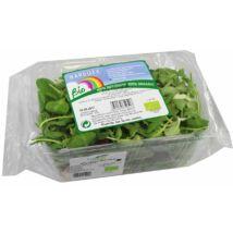 Saláta mix BIO 250g