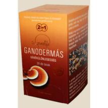 Ganodermás tasakos kávé 30x2,4g BIO