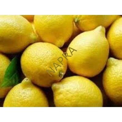 Citrom sárga BIO (kg)